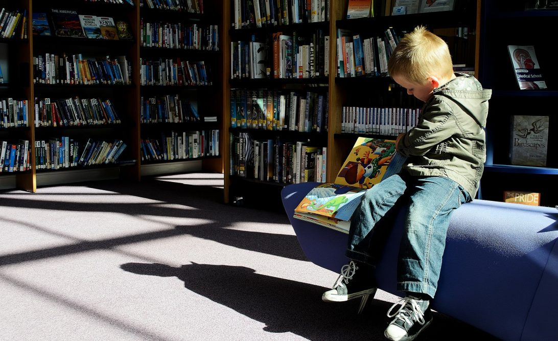 Young boy reading books in the library - career exploration books for kids