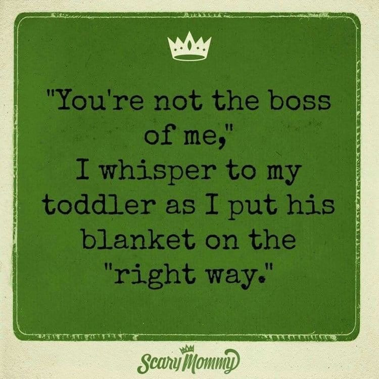 "You're not the boss of me, I whisper to my toddler as I put his blanket on the ""right way."""