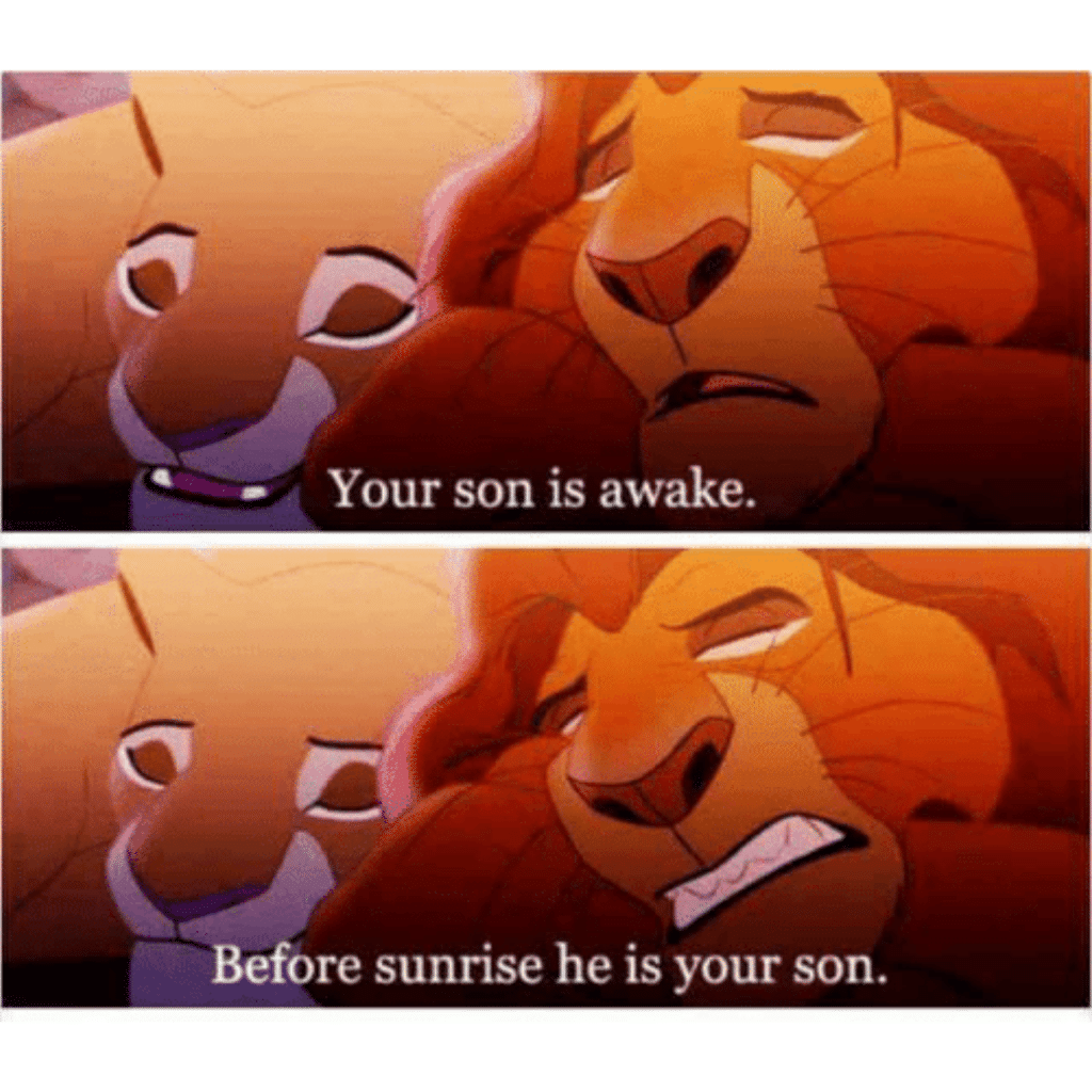 Lion King your son is a awake meme.