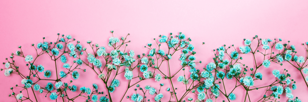 pink background, blue flowers